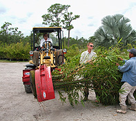 Rotating Pot Handler gives the operator a complete control on the tree.